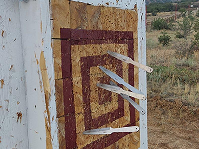 Стендовая мишень для метания клинков на территории ВОЛНЫ Поднебесной в Канаке.