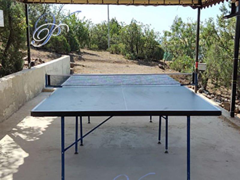 Теннисный стол на ВОЛНЕ Поднебесной под навесом и с освещением.